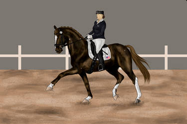 Fairy HARPG-Grand Prix Dressage WIP IV by RvS-RiverineStables