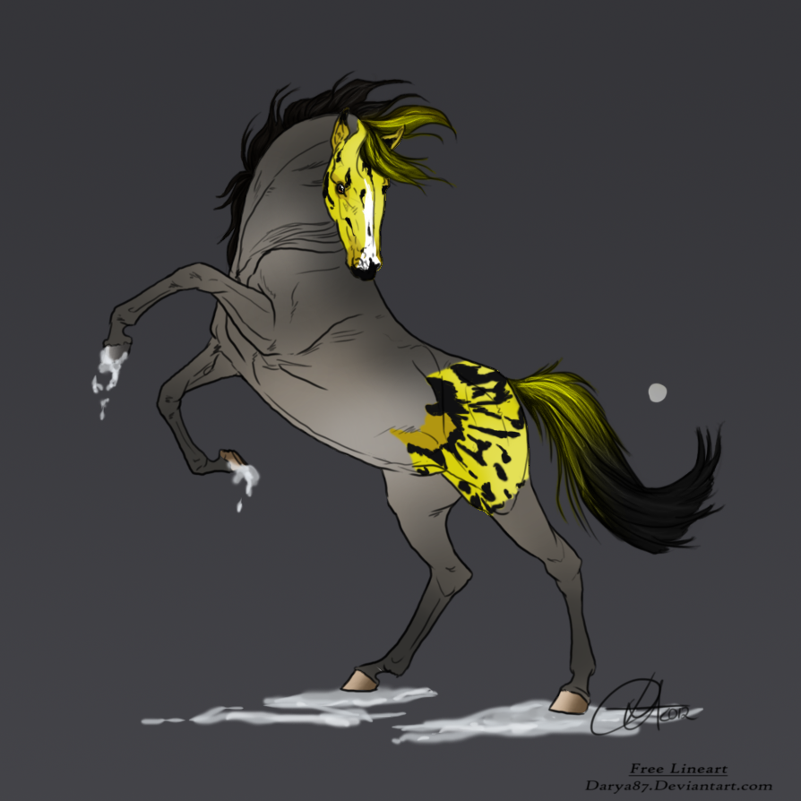 Dancisto Sporthorse Mutation Import #002 by RvS-RiverineStables