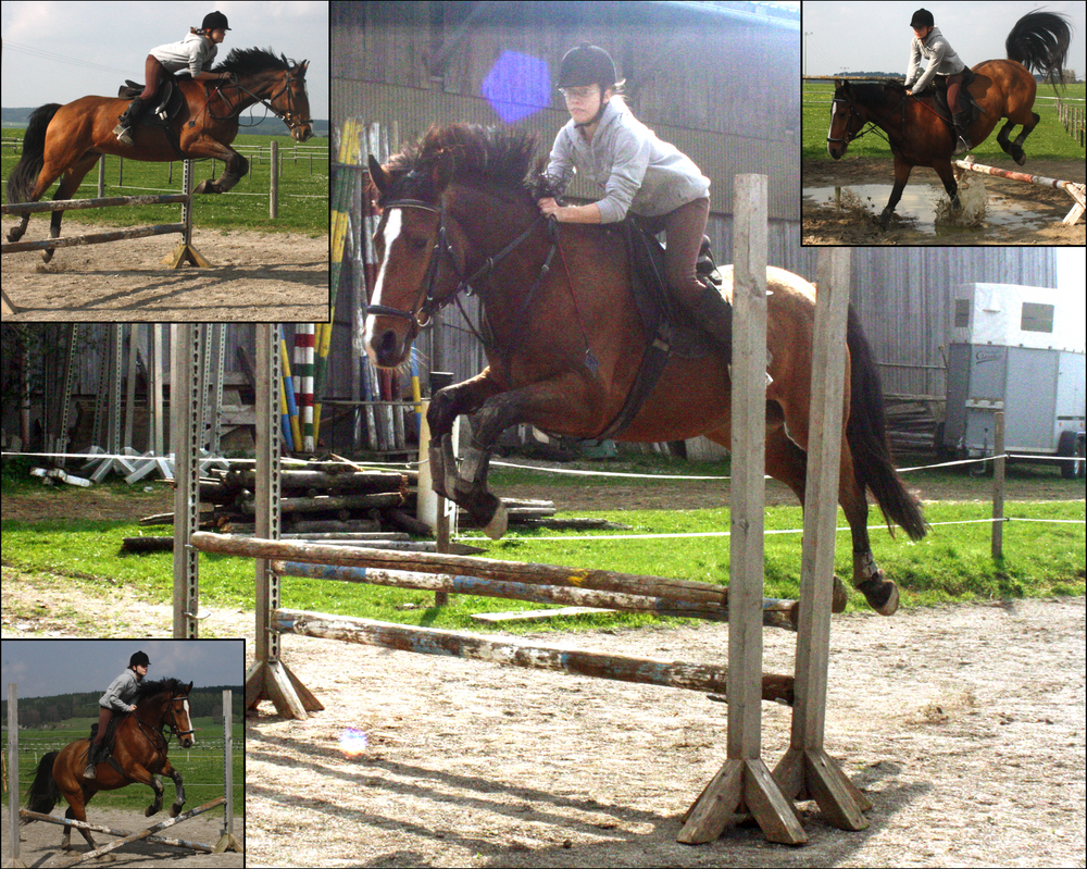 Today's Training by RvS-RiverineStables