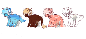 Hair Dogs Canine Adopts