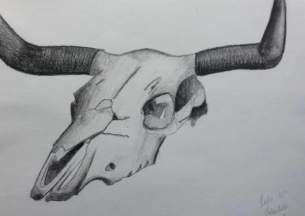 Charcoal Skull by CutePetLover