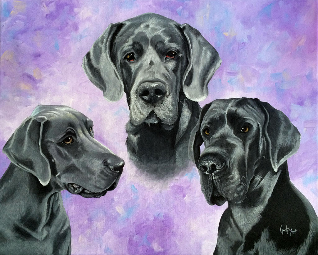 Helle's Blue Danes by LainDragon
