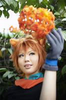 Welcome, Spring by AkaiRizumu
