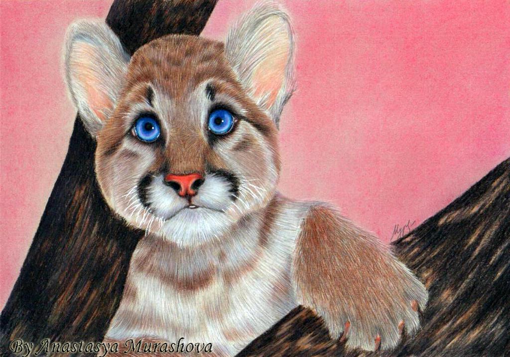 Naivety baby cougar by Anastasya-Murashova on DeviantArt