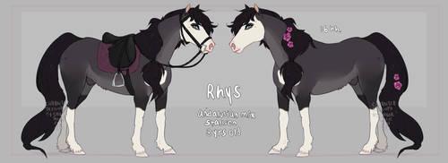 Rhys by SailorMoonFan666