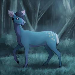 Kavari in the Woods