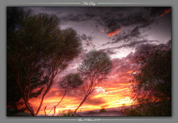 New Day HDR by khorask