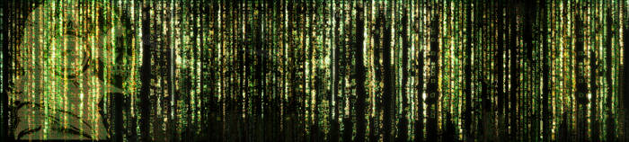 Matrix-esque Desktop Wallpaper (3 Monitor) by khorask