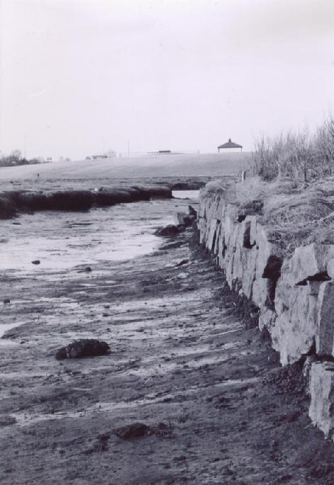 low tide by Demonmiss27