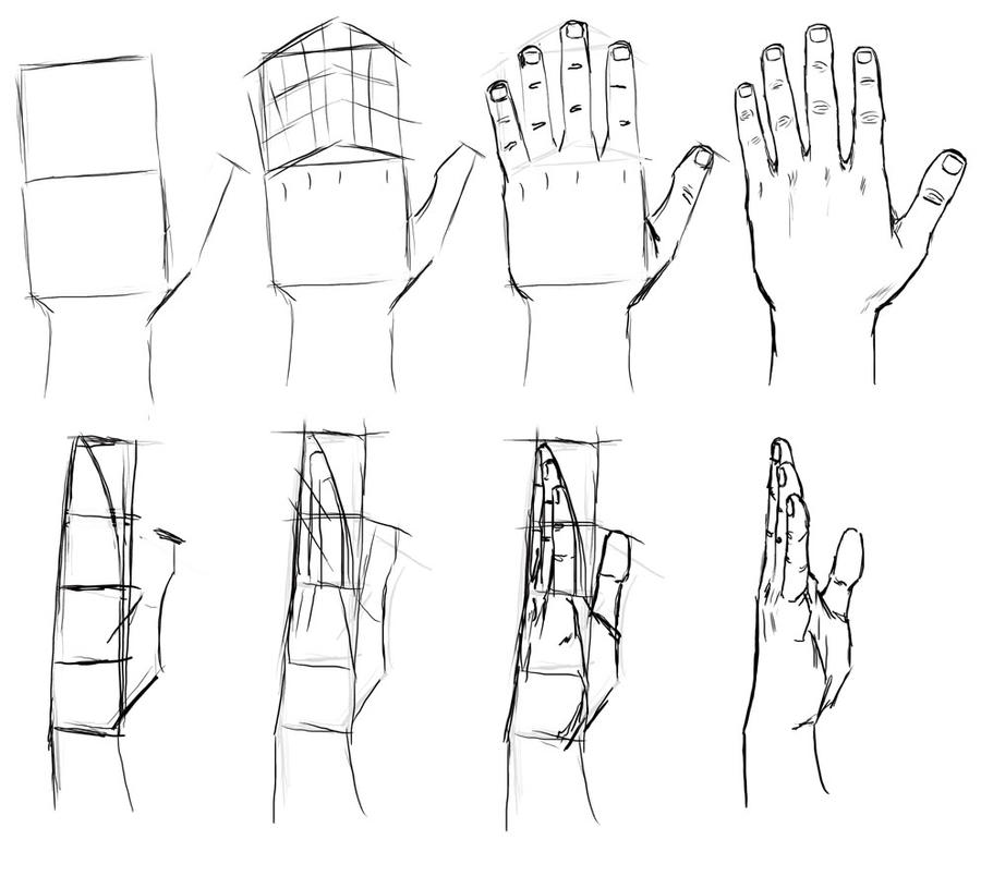 Hand Tutorial 2 by MasterSS on DeviantArt