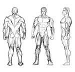Male Study Sketch