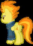 Spitfire - Group Captain rank