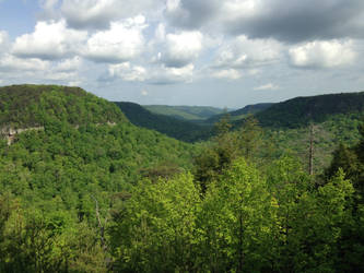 Cane Creek Gorge by queenkale