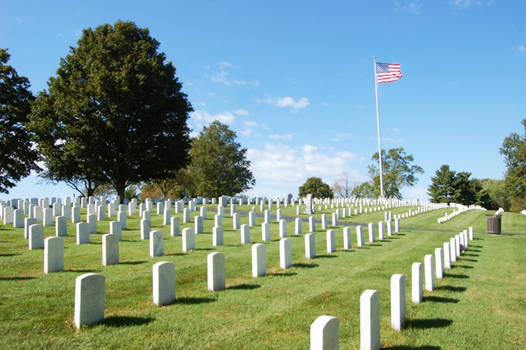 Mills Spring National Cemetery