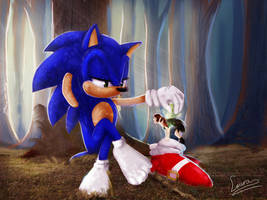 Stealing Sonic's shoes by Loorelai