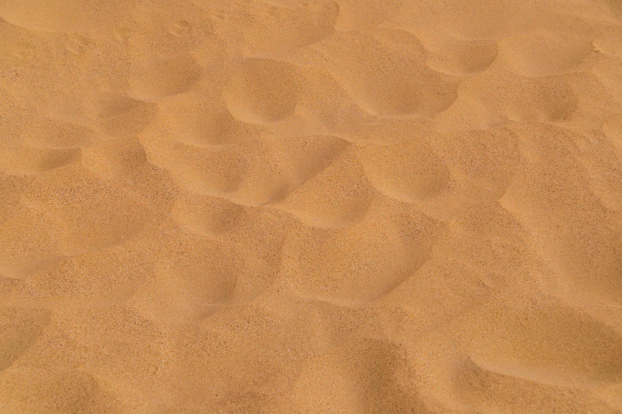 Sand Is Added To Dog Food