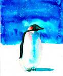 Penguin in Watercolor