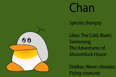 Paper Mario SB Partner: Chan by Cyber-Hero