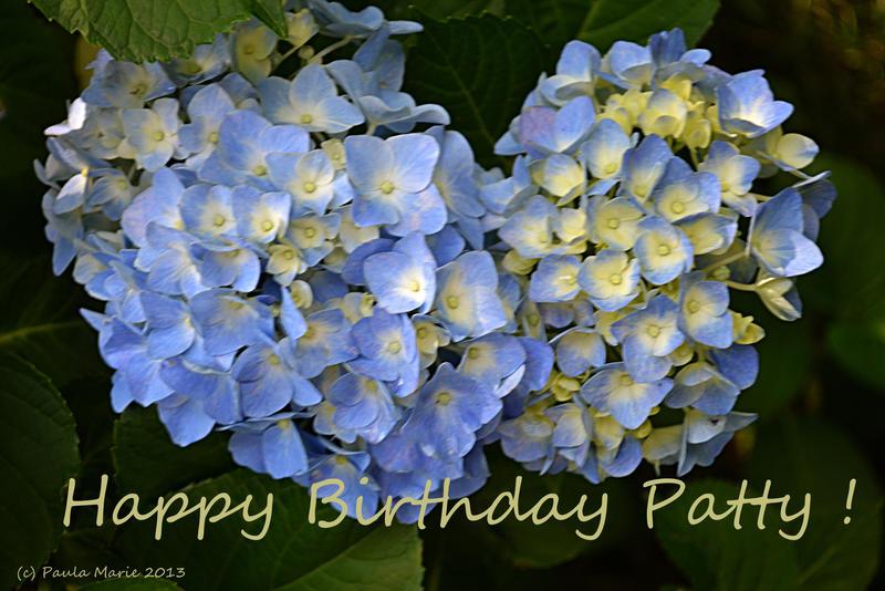 Happy Birthday Patty By Youlittlemonkey On Deviantart