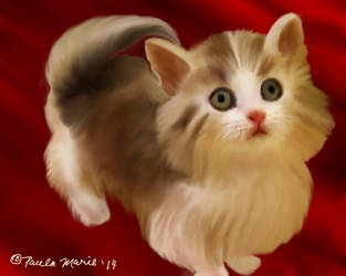 Cat For Lucy by youlittlemonkey