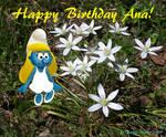 Happy Birthday Acla13 by youlittlemonkey