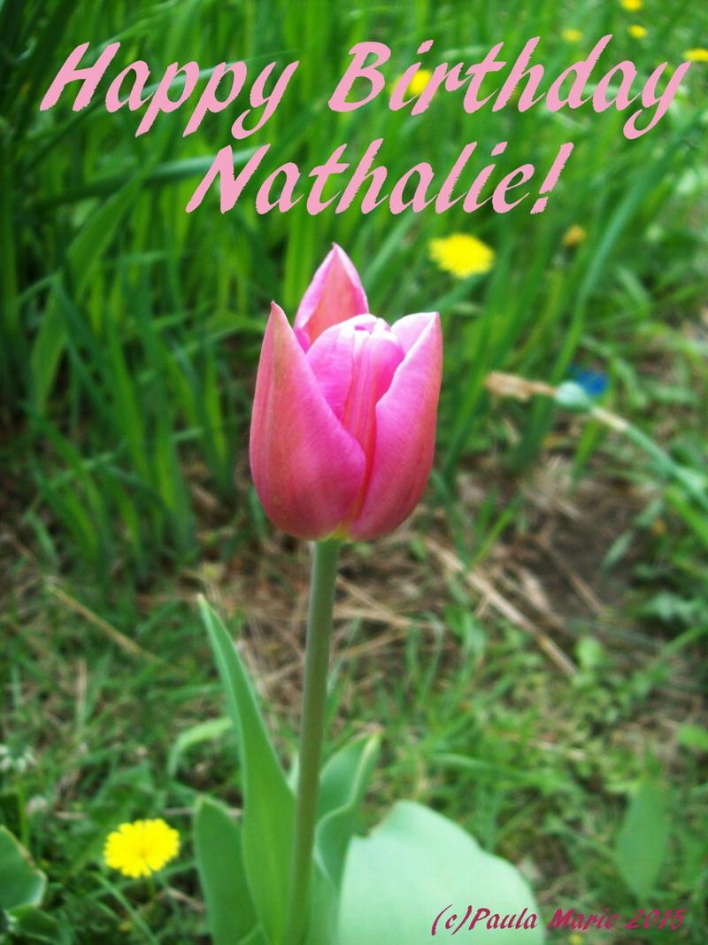 Happy Birthday Nathalie By Youlittlemonkey On DeviantArt