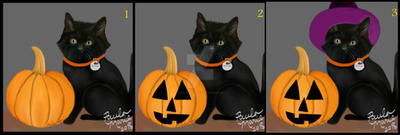 Witch Kitten Do U Think Represents Halloween? by youlittlemonkey