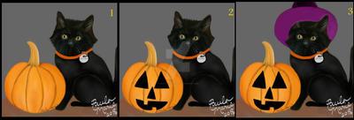 Witch Kitten Do U Think Represents Halloween? by youlittlemonkey