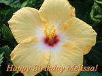 Happy Birthday Melissa 2019