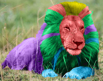 multi color lion by reversebladekenshin on DeviantArt