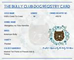 TBC Dog Reg Card