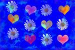 Cute heart daisy