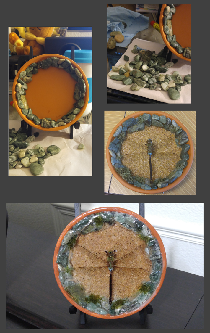 Dragonfly Resin 2 by Wakerra