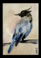 A bird by kAMRiS