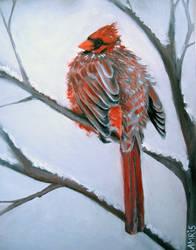 Winter bird by kAMRiS
