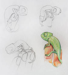 tiny chameleon by kAMRiS