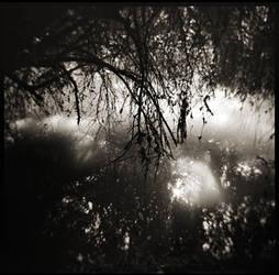 Teardrops river