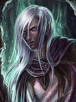 Drizzt - The Early Days
