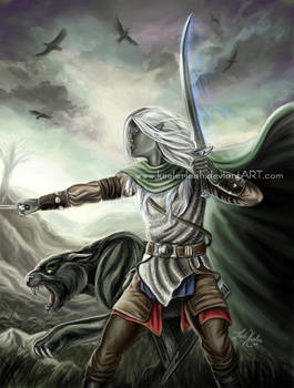 Drizzt and Guenhwyvar