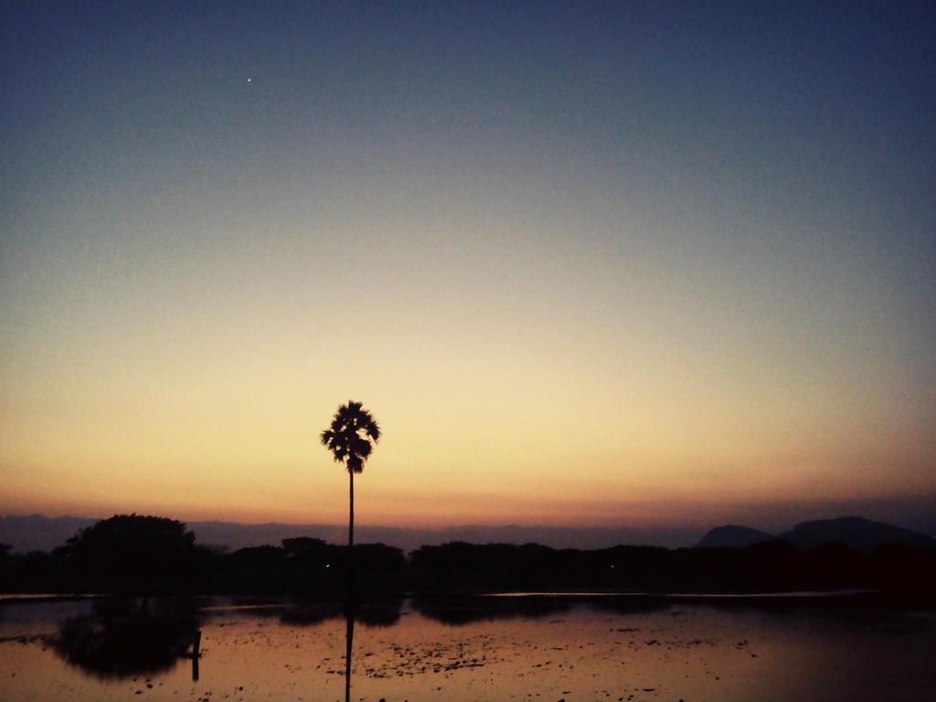 A night as beautiful as a new born child. by suryatejaj