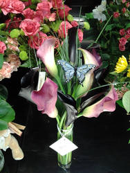 Calla Lilly and by NikkiAgent