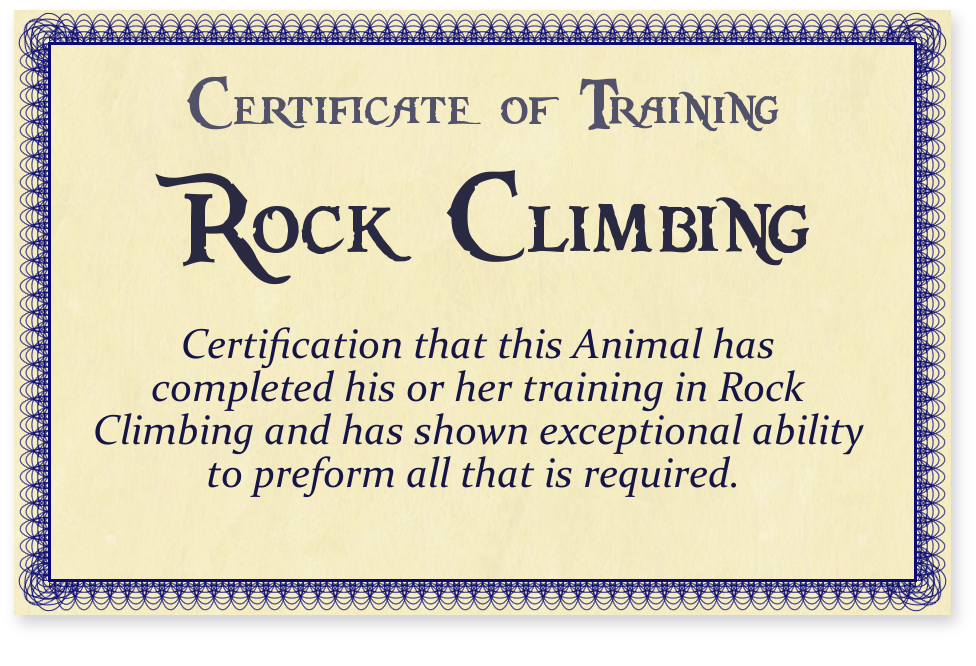 Certificate of Rock Climbing Training by DuinKeeper on DeviantArt