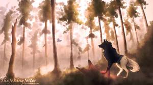 Forest Adventure   Contest Prize