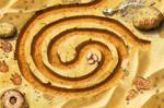 Stoneloops of Jurassica: Desert Level 1