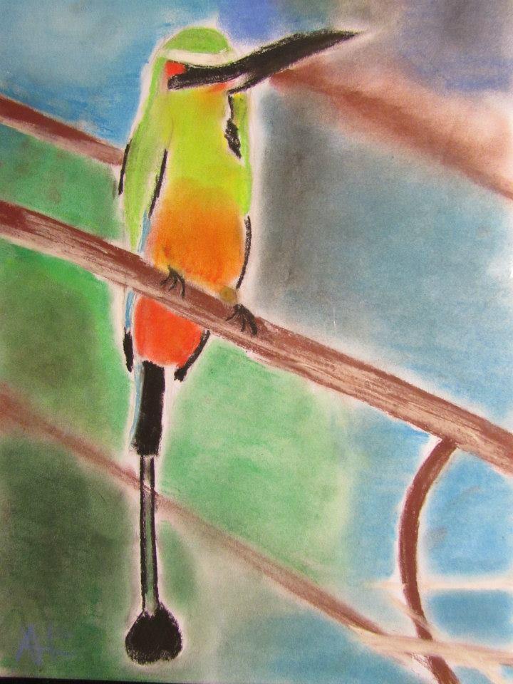 Birds numero 2 by RickyPie