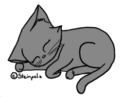 Warrior Cats Birkenfall