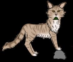 Warrior Cats Feuersterns Alter