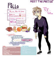 meet the artist by pollovy