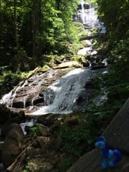 Amicalola Falls State Park, GA by DynamoDazzle