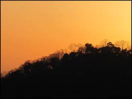 Orange Sunset by AntiRetrovirus